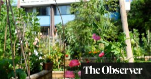 Why is gardening so good for your mental and physical health?
