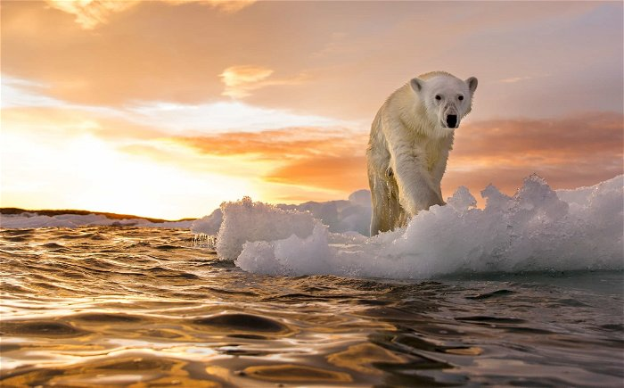 Facebook doubles down on debunking climate change myths