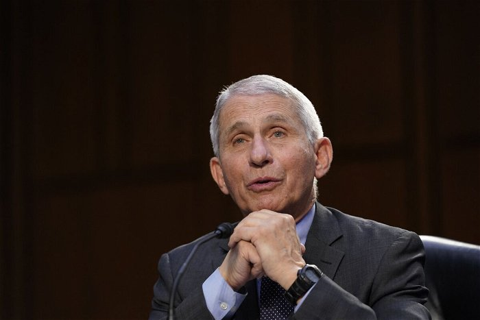 Fauci 'Not Quite Sure' Why Covid Cases Are Dropping in Texas After Restrictions Were Lifted
