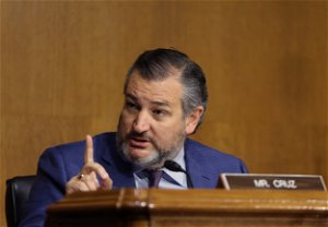 Ted Cruz defended an anti-mask parent who did a Nazi salute at a school board meeting