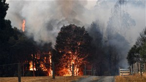 Australian fires in 2019–2020 had even more global reach than previously thought
