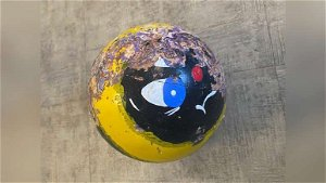 Police searching for owner of bowling ball that crashed through school bus windshield in NH