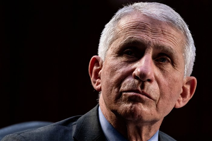 """Fauci hits back at Peter Navarro's """"bizarre"""" father of COVID comments"""