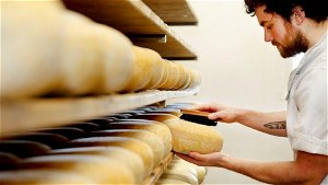 Food and drink exports to EU 'almost halve' in first quarter