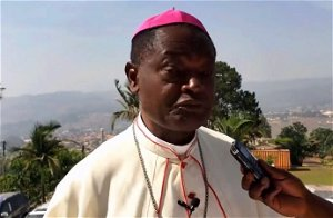 U.S. sanctions for Cameroon Anglophone crisis are 'cosmetic', bishop says - CameroonOnline.org