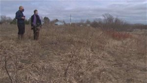 Conservationists push City of Fredericton to protect north side wetland