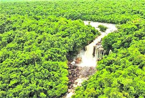 Govt opens tender for construction of Amaila Falls Hydro Project