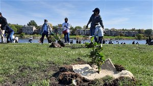Community plants a forest for the future