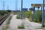The weeds are growing waist-high on Eastern Cape train stations