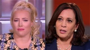 Meghan McCain: Harris 'sounded like a moron' discussing immigration