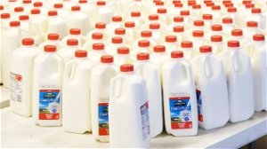 Gillibrand holds hearing on dairy prices