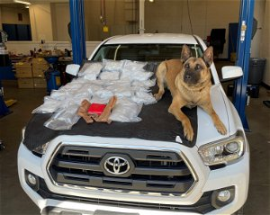Border patrol seize ten pounds of fentanyl, heroin and cocaine at southern checkpoint