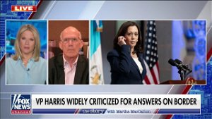 [Opinion] Harris 'not experienced' on border issues, put in a 'lose-lose' situation: Victor Davis Hanson