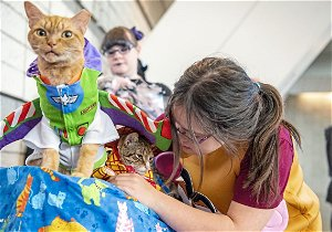 Pet Tales: Time to dress up your pet for the Pittsburgh Pet Expo