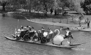 Swan Boats are back