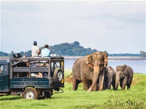 Sri Lanka records over 7,000 tourists arrivals in October