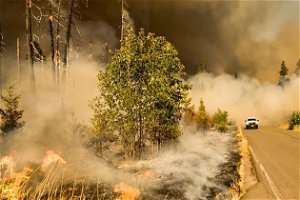 Pollution from west coast wildfires measured in New York, Boston