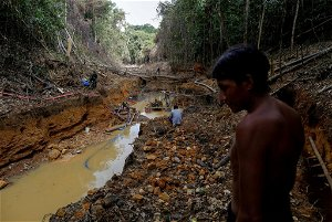 Two Yanomami boys drown in Brazilian river used by illegal gold miners