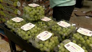 SNAP benefits to end if disaster declaration terminated