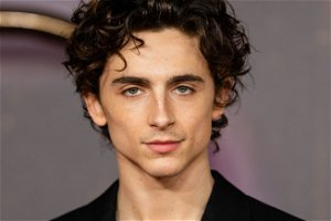 Timothée Chalamet Used To Be A YouTuber Who Loved Showcasing Xbox 360 Controllers