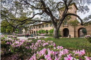 LSU Student speaks out on campus safety