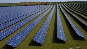 Analysis: One taxonomy to rule them all? Investors face myriad green investing rules