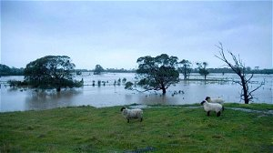 Large parts of regional Victoria brace for flooding, wild weather as bureau issues warnings