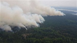 Wabaseemoong Independent Nations latest to start partial evacuation due to wildfires