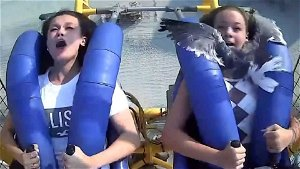 Seagull hits teen in face while on amusement park ride