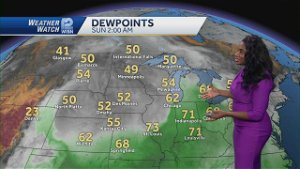 Videocast: Lowering Humidity