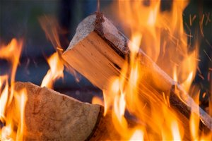 Proposed Firewood Quarantine To Keep Pests Out Of Michigan