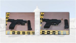 Richmond couple arrested with loaded guns near US Capitol, authorities say