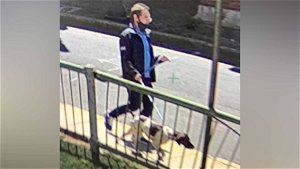 Man Facing Charges After Dog Is Stolen From Car In Cambridge