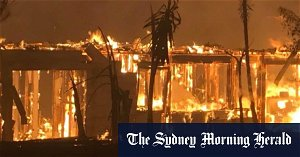 Greater urgency is needed in learning lessons from 2019 bushfires