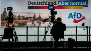Germany's divided far-right AfD to launch election bid