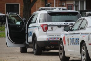 Windsor police seek information surrounding home invasion and assault