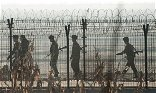 North Korean gymnast jumps 12ft fence across border to defect to South