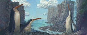 Fossilised long-legged giant penguin identified as new species