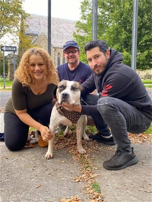 Pup finds loving new home after past owner was fatally stabbed in the Bronx
