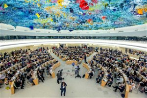 UAE could be torturing detained activists, UN says