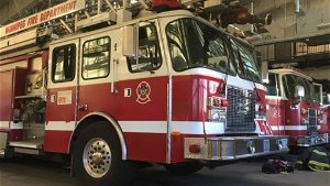 House fire caused by unattended cooking: WFPS