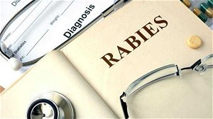 Racoon with rabies found dead in Cumberland County yard