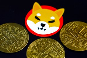 Shiba inu coin price hits a new record as Robinhood petition gains popularity