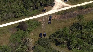 Brian Laundrie's skeletal remains given to forensic anthropologist to determine cause of death