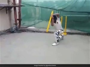 This Prodigy, Batting With One Stump, Will Leave You Spellbound. Watch