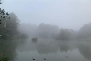 Greater Manchester wakes up to thick blanket of fog