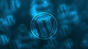 This vicious WordPress plugin bug could wipe your whole site