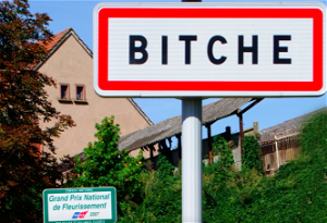 Facebook takes down official page for French town called Bitche