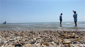'Beach Ambassadors' educate about Lake Michigan conditions in Milwaukee