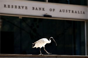 Central Bank of Australia Aims to Boost Inflation But If It's Too High, Problem = Vice President